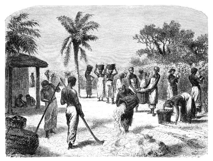 black history 1619