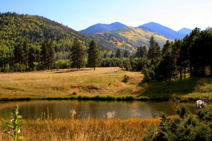 Lockett Meadow - Inner Basin - Flagstaff Arizona